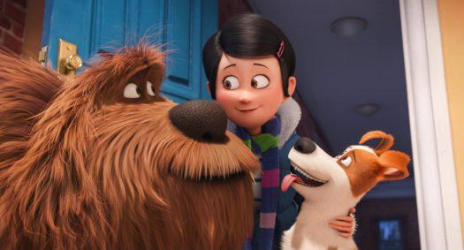 Pets - Duke, Katie e Max