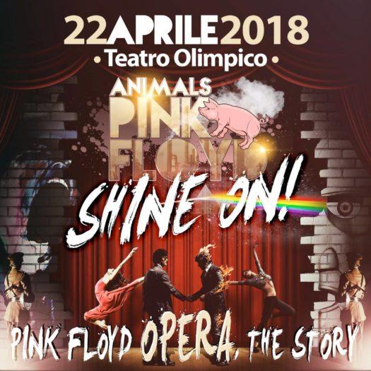Animals Pink Floyd - Shine On!