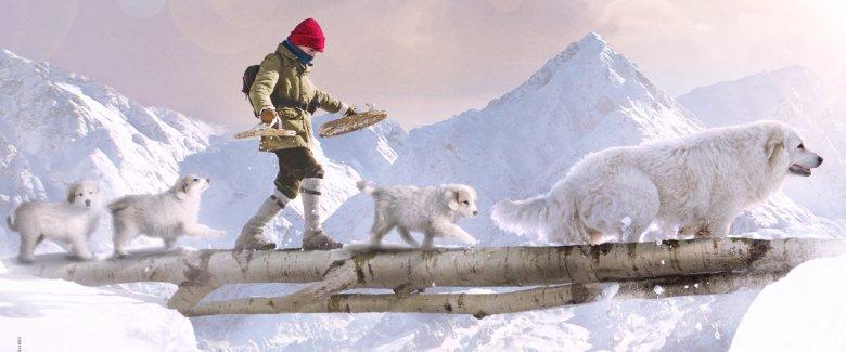 È il 1948 e le innevate Alpi francesi tornano ad essere scenario delle avventure dei due inseparabili amici Belle e Sebastien (Félix Bossuet). Nel terzo capitolo della saga ispirata ai […]