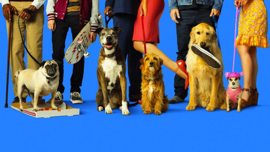 """Il cane è il miglior amico dell'uomo.. e ogni tanto anche il suo più grande e divertente """"guaio"""". O, almeno, se si tratta dei protagonisti canini di Dog Days, dove […]"""