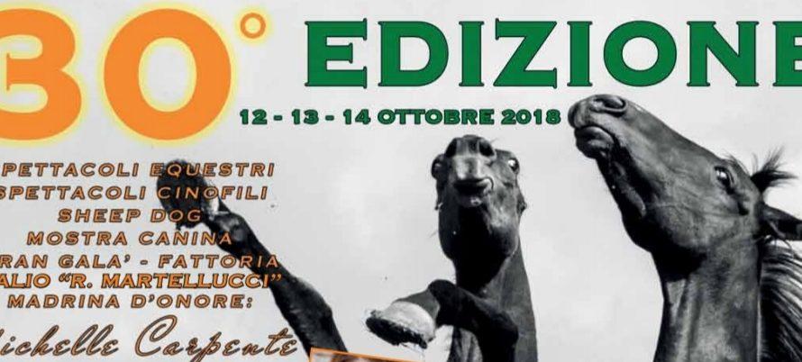 Torna dal 12 al 14 ottobre la 30^ edizione della Fiera di Arischia (L'Aquila), evento organizzato dall'Associazione Abruzzo Fiera che, riprendendo e rivitalizzando un antico mercato di bestiame locale, si […]