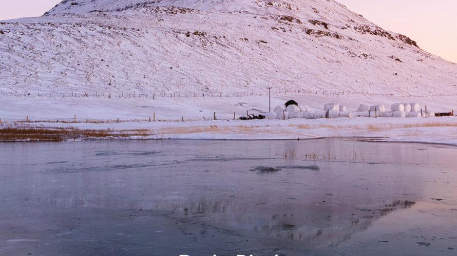 """Il Taccuino Ufficio Stampa Presenta  Nove C di Dario Ricci Lo scrittore fiorentino Dario Ricci presenta """"Nove C"""", una storia d'amore e di montagna, una riflessione sulla paura di […]"""