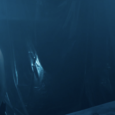 Dopo il grande successo riscosso sui prestigiosi schermi di SITGES – Festival internazionale del cinema fantastico della Catalogna, dove è stato presentato nella sezione Brigadoon, Everybloody's End di Claudio Lattanzi […]