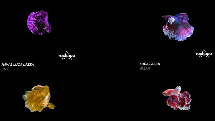 """Si intitola """"Bailar"""" il nuovo singolo di Luca Lazza, in uscita venerdì 10 aprile 2020 su Reshape Records. Una traccia tribal house caratterizza da un basso tech house ed arricchita […]"""