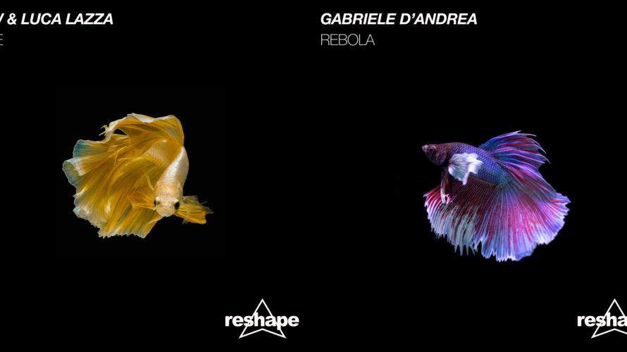 """Si intitolano """"Cafè"""" e """"Rebola"""" i nuovi singoli di Reshape Records, firmati rispettivamente da NAW & Luca Lazza e da Gabriele D'Andrea. In entrambi i casi, house music declinata in […]"""