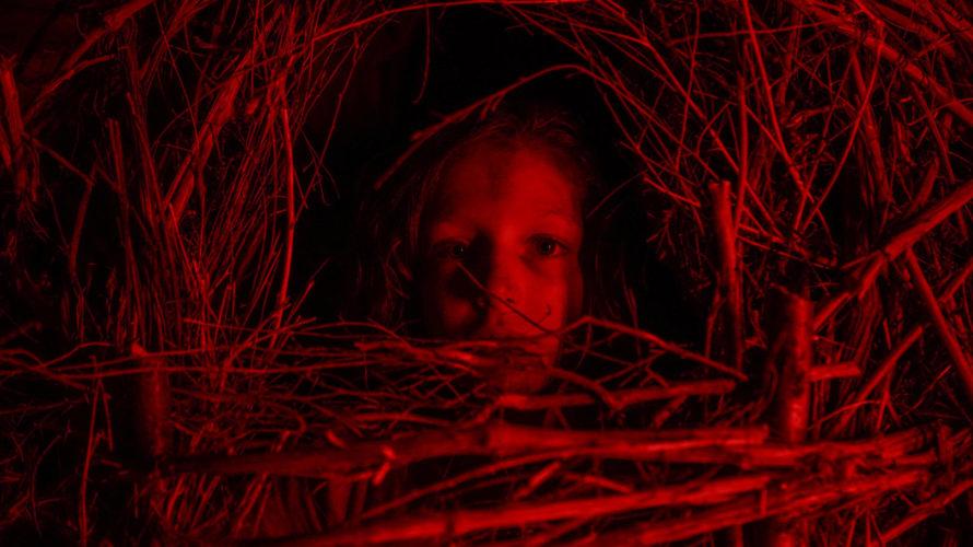 Ecco il teaser trailer ufficiale e le prime immagini di A classic horror story, una classica storia dell'orrore, come suggerisce il titolo, un omaggio alla tradizione di genere italiana che, […]