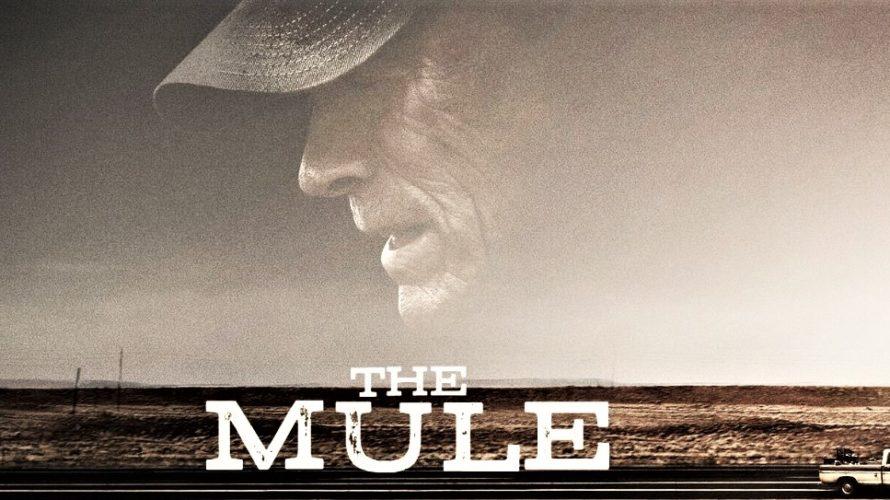 Stasera in tv su Canale 5 alle 21,20 Il Corriere – The Mule, un film del 2018 diretto e interpretato da Clint Eastwood. Il film è basato sulla storia vera […]