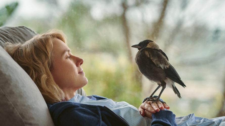Penguin Bloom è diretto da Glendyn Ivin e interpretato dal'attrice due volte candidata all'Oscar Naomi Watts nel ruolo della protagonista, insieme ad Andrew Lincoln, uno dei protagonisti dell'iconica serie tv […]